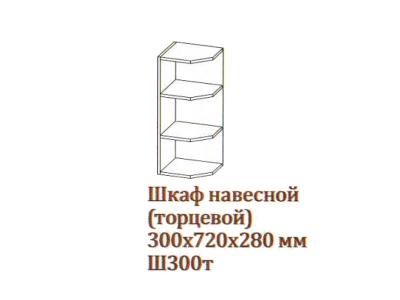 Арабика Шкаф навесной 300_720 торцевой Ш300т_720 300х720х280 Серый