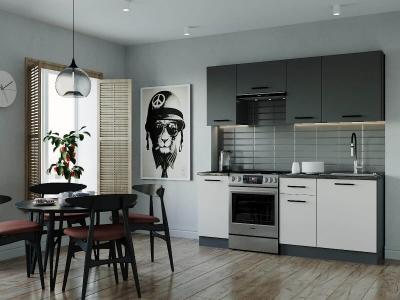 Кухонный гарнитур Лофт-2000