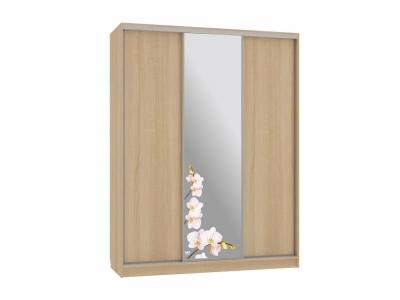 Шкаф-купе Бассо 1-600 орхидеи дуб сонома